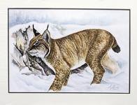 Stig Erinder 65x50 Akvarell orginal