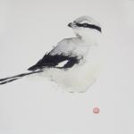 Karl Mårtens Varfågel 31x31 Litografi