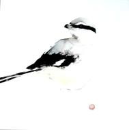 Varfågel 30 x 27 (1)