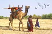 6B. Nomadfamilj (Jat folket, Gujarat, Indien)