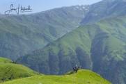 8B. Vandring (Tusjeti, Kaukasus, Georgien)