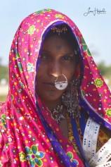 4C. Beslöjad  (Gujarat, Indien)