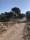 Natureservatet vid saltsjön