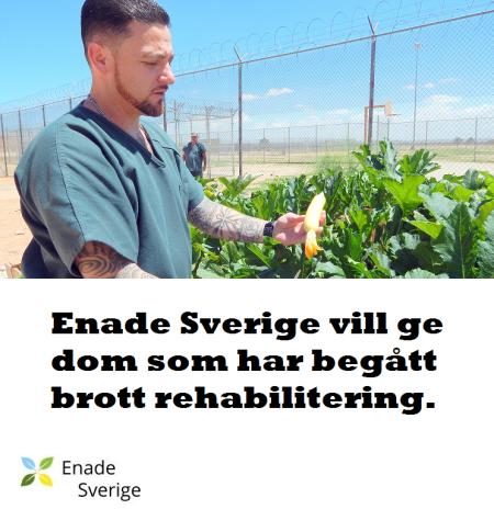 Fångarna kan få odla sina egna grönsaker