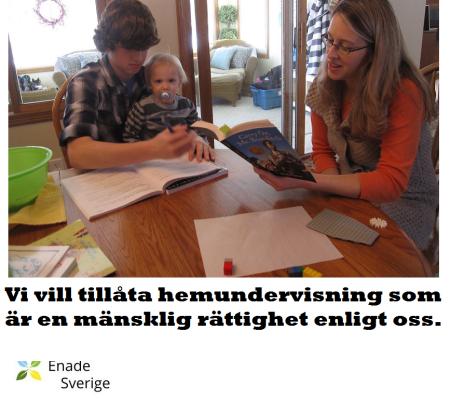 Hemundervisning är tillåtet i alla nordiska länder utom Sverige! Dags att vi tillåter detta även i Sverige.