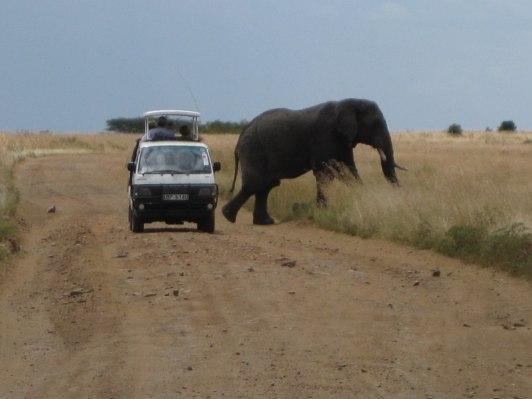 Elefanter är stora, minibussar är små...