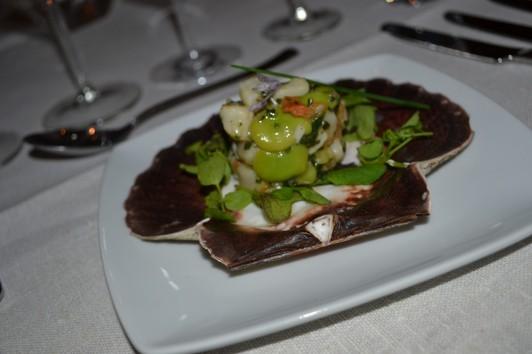 Tartar på pilgrimsmusslor, bondbönor och koriander serverade med vilda ängsörter