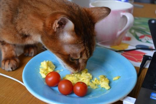 Sista dagen i livet får man äta från mattes tallrik...:(