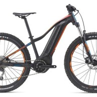 Giant FATHOM E+ 3 POWER 29ER