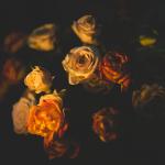 pexels-photo-131821