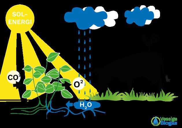 Hållbar Energi - Vessige Biogas  i Falkenberg, Halland