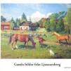 Gamla bilder från Ljusnarsberg - Gamla bilder, no 21, 2005