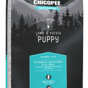 Lamp & Potato Puppy