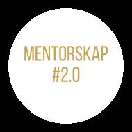 vit mentorskap
