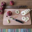 Apelstapeln äppeltork - apple dryer 4  www.apelstapeln.se
