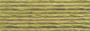 Moulinégarn - Anchor 843 Mossgrön mellan (motsvarar DMC 3012)