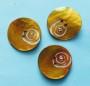 Porslinsknapp 28 mm med Pärla - Porslinsknapp Gul 28 mm