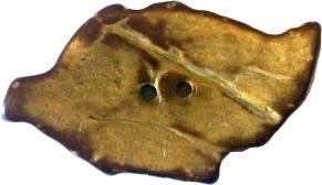 Kokosknapp Löv 38 mm - Kokosknapp Löv 38 mm