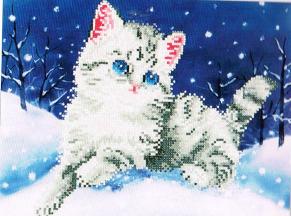 Kitten in snow - Kitten in snow