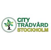 Trädfällning av professionell arborister, även trädbeskärning,  stubbfräsning och bortforsling i och runt Stockholm. Trädvård av City Trädvård AB i Stockholm