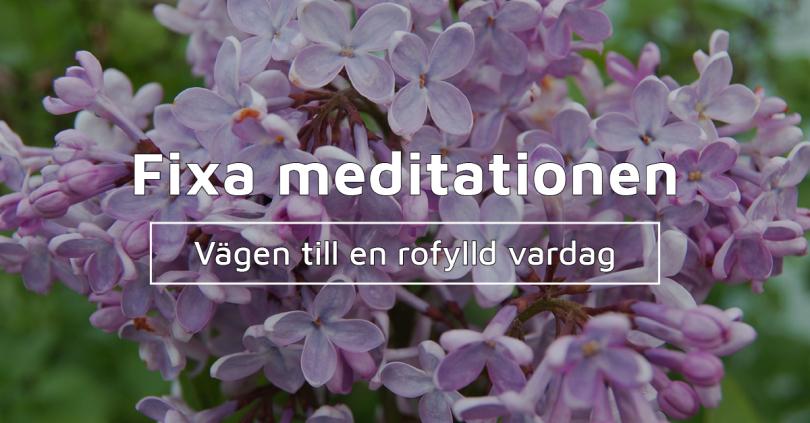 GreatBeing gratis e-kurs: Fixa meditationen