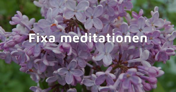 Blogginlägg GreatBeing: Gratis e-kurs - Fixa meditationen