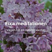 Fixa meditationen