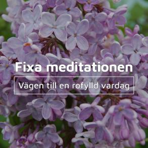 Fixa meditationen - Fixa meditationen