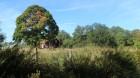 Småland Countryside _1