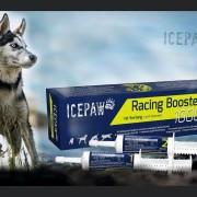 Icepaw Racing Booster