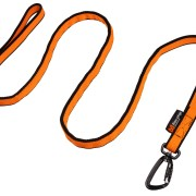 Bungee Leash, 2 m