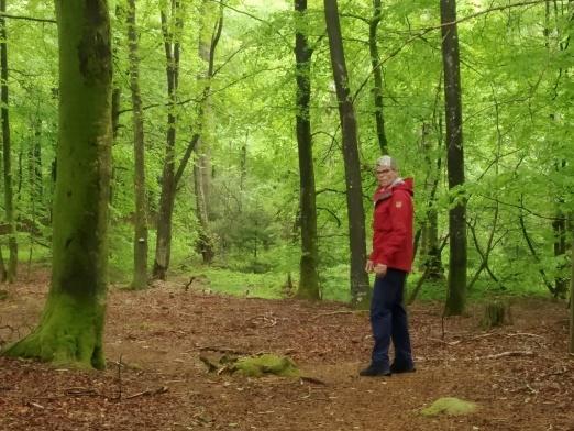 Guidad familjevänlig hiking i Halland – Upplev våren i den Halländska naturen till fots på vår-hike med Recreation.nu i Halmstad.