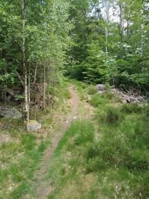 """Komma """"ifrånhike"""" - Upplev den vackra Halländska naturen på guidad vandring med övernattning & matlagning över öppen eld. Boka hike med Recreation.nu Halmstad"""
