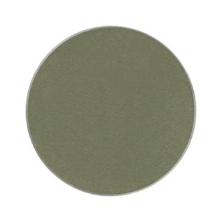 Eyeshadow Magnetic refill Varma Nyanser - Autumn Green