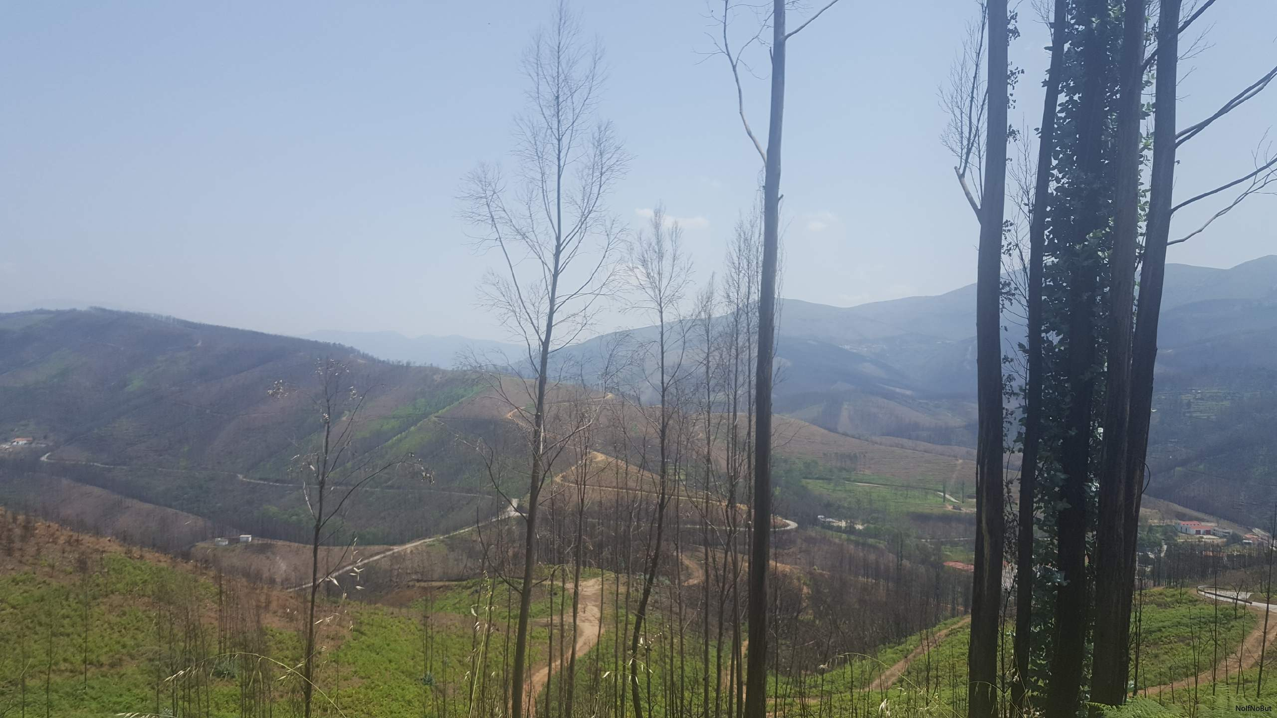 hastighet dating i skog kullar ca
