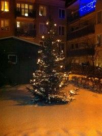 Välklädd julgran 2010!