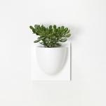 Vertiplants väggkruka, vit
