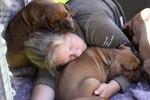 Love to sleep with them