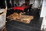 4 trötta hundar
