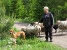 Volkert 20110528 081