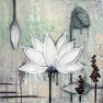 Giclée Fine Art Print - Lotus 50x50