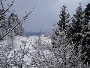 Vintermakters tempel
