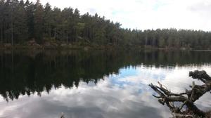 Trollkyrkobergssjön, Tiveden. Foto: Per Lundberg