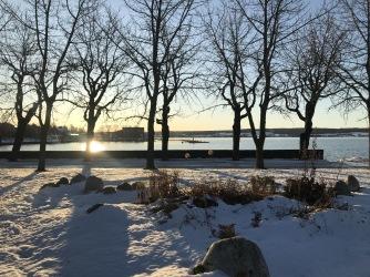 Vinter med snö och sol