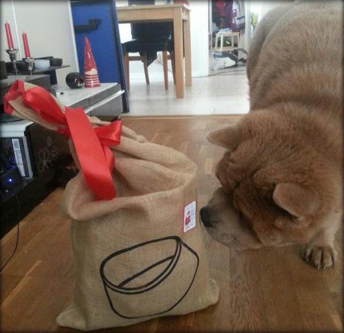 Sen har det varit julafton och så klart så ska Terry ha ett alldeles eget paket.
