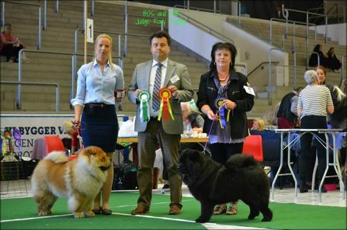 BIM -Linda Johansson med Multi Champion Di Ka Tzhou och BIR - Sara Axelsson med Commitment's Lady Million