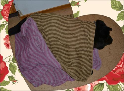 En sjuk Corina med blöta, kalla handdukar på sig