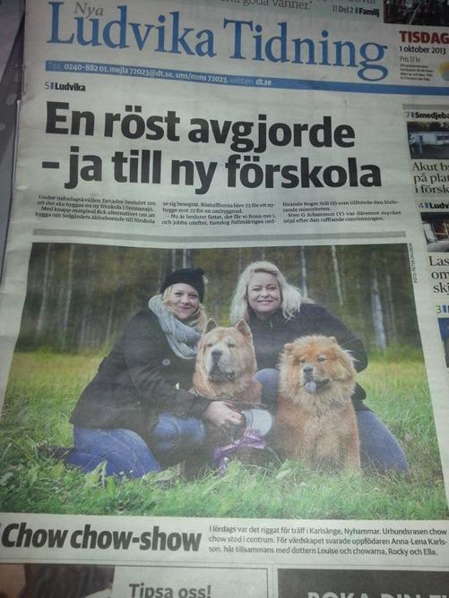 Framsidan i Nya Ludvika Tidning. Min dotter Louise med Rocky och jag med Ella