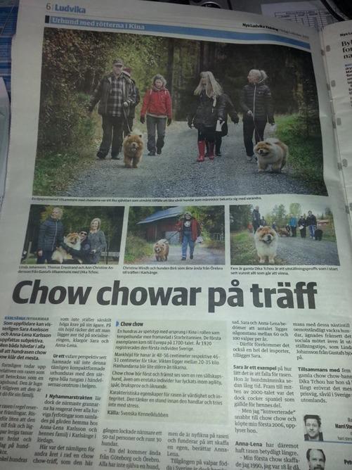 En helsida i Nya Ludvika Tidning från träffen i Nyhammar