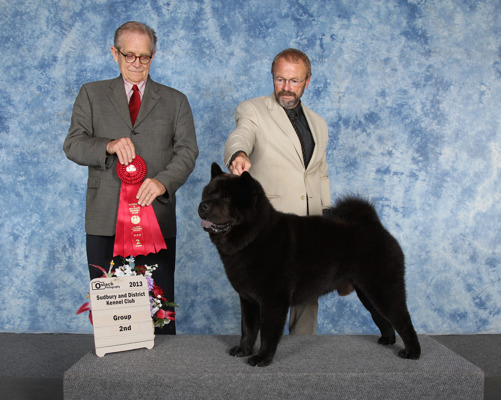 Atticus och Peter har vunnit grupp 2